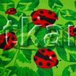 Вафельное полотно - Божьи коровки (цвет зеленый, красный, белый, с рисунком божьи коровки, листочки, ширина 50 см)